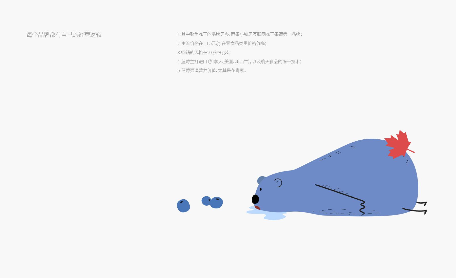 蓝莓品牌设计